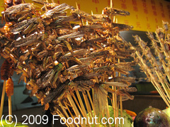 Dong-Hua-Men-Night-Market-Beijing-China-Bugs.jpg